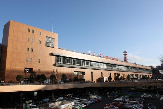 仙台駅出発|猫島(猫の島)で有名な『田代島』を中心に巡る1泊2日石巻離島の旅