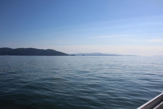 石巻湾|猫島(猫の島)で有名な『田代島』を中心に巡る1泊2日石巻離島の旅