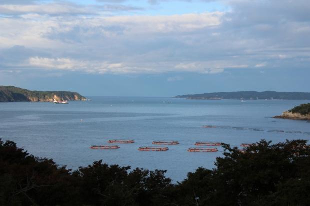 あたみ荘の朝の眺め|猫島(猫の島)で有名な『田代島』を中心に巡る1泊2日石巻離島の旅