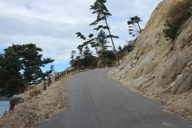 金華山坂道の様子|猫島(猫の島)で有名な『田代島』を中心に巡る1泊2日石巻離島の旅