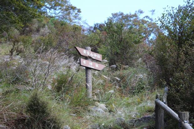 金華山の山頂へ|猫島(猫の島)で有名な『田代島』を中心に巡る1泊2日石巻離島の旅