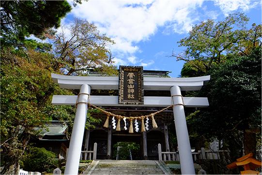 猫島で有名な『田代島』を中心に巡る1泊2日石巻離島の旅のご紹介です